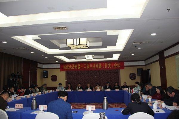 民进长沙市委十二届八次全体(扩大)会议召开