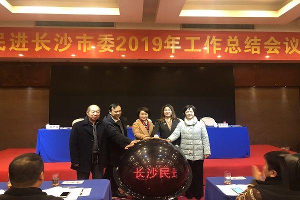民进长沙市委举行2019年工作总结会议