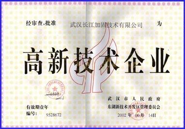 """獲武漢市人民政府審查批準的""""高新技術企業""""證書"""